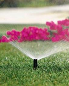 we always carry the best products like this Rainbird sprinkler